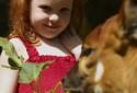 animal-orphanage