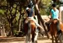 equestrian-center