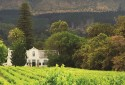 stellenbosch-wine-farm
